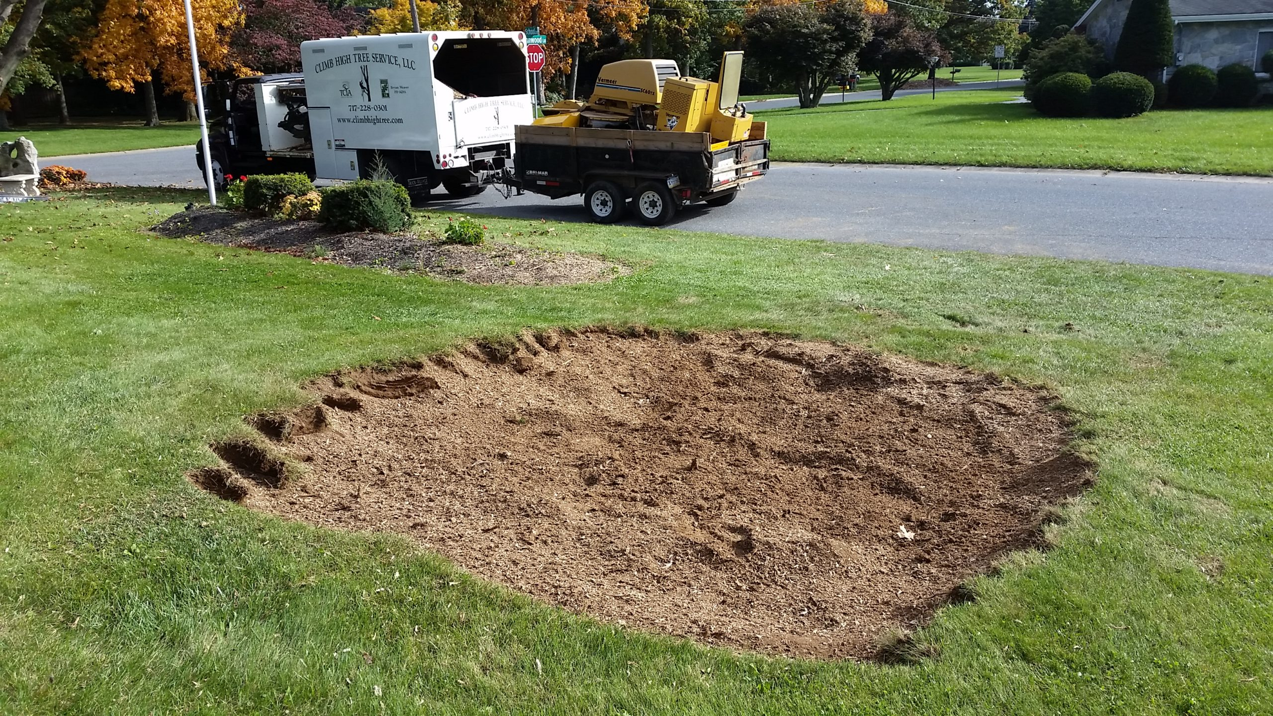 Stump Grinding (after)